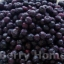 บลูเบอร์รี่แช่แข็ง (ลูกเล็ก) / Blueberry 1 กก. thumbnail 1