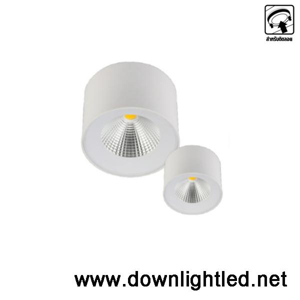 ดาวน์ไลท์ LED EVE 15w (แสงขาว)