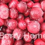 แครนเบอร์รี่แช่แข็ง / Cranberry (1 กก.)