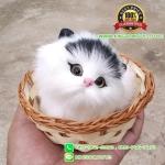 แมวสีขาวหูสีดำ นอนหลับในตะกร้าหวาย 12x12 CM [มีเสียง]