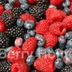มิกซ์เบอร์รี่แช่แข็ง / Mixed Berry (1 กก.)