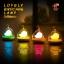 Lovely Birdcage Lamp โคมไฟกรงนก เปิดปิดระบบสัมผัส สีฟ้า thumbnail 9