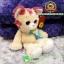 ตุ๊กตาแมวขายาวบิ๊กอาย 10.5 นิ้ว [Anee Park] thumbnail 2