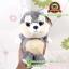 ตุ๊กตา น้องหมาไซบีเรียน ฮัสกี้ ตาโต มีเสียง 7.5 นิ้ว [Anee Park] thumbnail 1