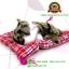 ตุ๊กตาแมวเหมือนจริงนอนหลับ สีเหลืองดำ 14x17 CM thumbnail 7