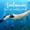 """""""Andaman"""" dive into another world"""