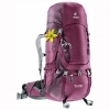DEUTER Aircontact 50 + 10 SL blackberry-aubergine (purple)
