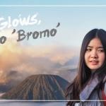 Life Glows, Go 'BROMO'