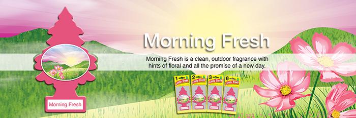 Little Trees Air Freshener - Morning Fresh