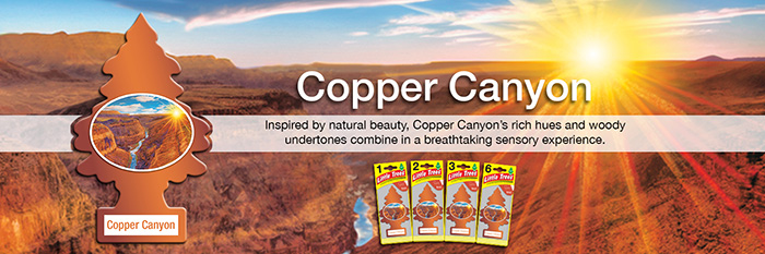 Little Trees Air Freshener - Copper Canyon