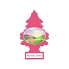 Little Trees Air Freshener - Morning Fresh