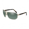 WX l HAYDEN Polarized Green/Satin Gold