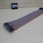 30cm Cable jumper 40P Male-Male (ผู้-เมีย)