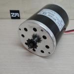500W 36V DC Electric Motor 2700 RPM